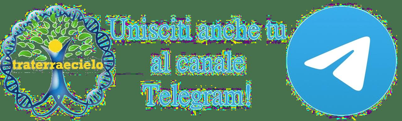 Segui su Telegram